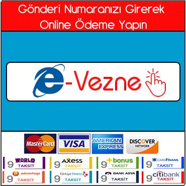 e-Vezne